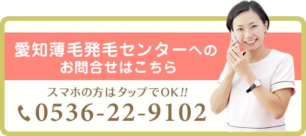 電話番号:0536-22-9102